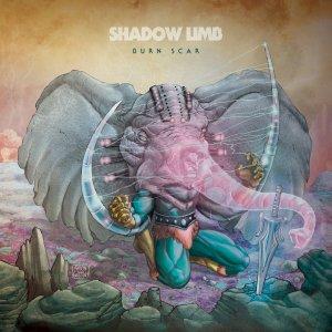shadow limb
